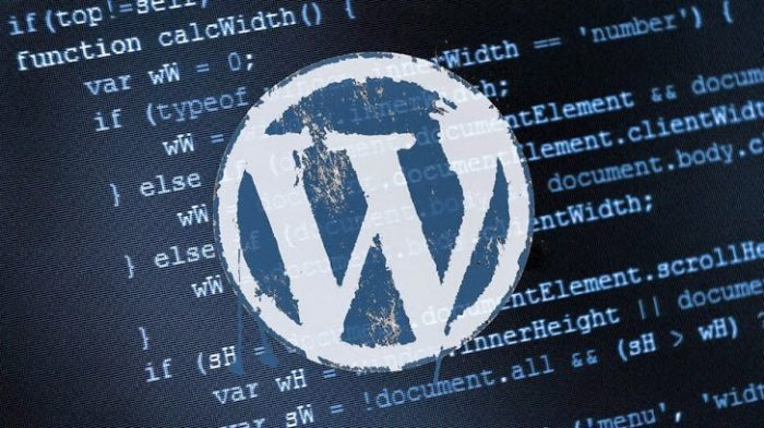wordpress-hacking-exploit