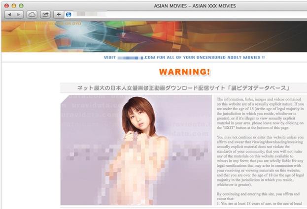 Đánh cắp các thông tin tài khoản ngân hàng thông qua các website khiêu dâm của người Nhật