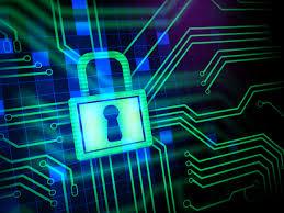 Kinh doanh chứng nhận đăng ký Rogue Code gia tăng trên diễn đàn ngầm