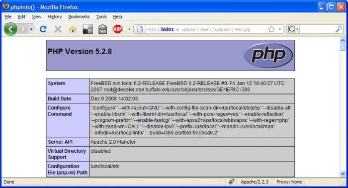 PTMFOG0000001241