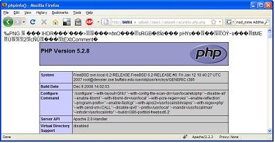 PTMFOG0000001243
