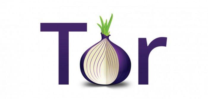 TorLogo-v2-onion1-702x336