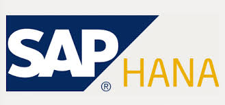 Lỗ hổng dữ liệu SAP HANA lây nhiễm XSS và SQL