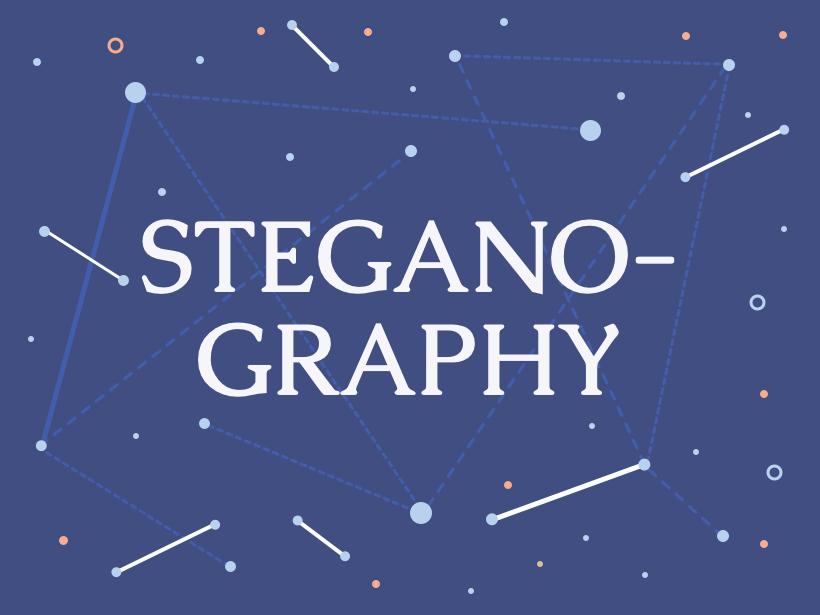 wp-content/uploads/2018/12/stegano.png
